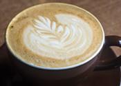 Best Specialty Coffee