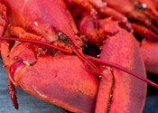 Nova Scotia wants a new seafood brand
