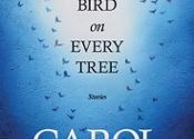 <i>A Bird on Every Tree</i> book launch