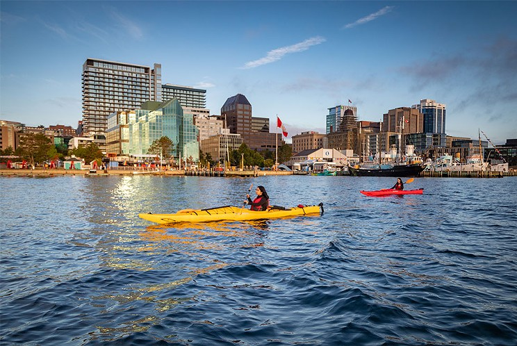 View Halifax from sea level in a kayak rental from Harbour Watercraft Tours & Adventures ADAM CORNICK