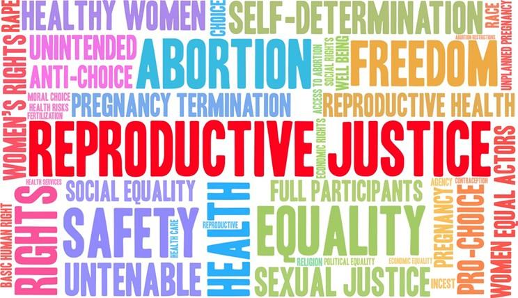 texas_reproductive_rights_abortion_halifax_rally_the_coast.jpg