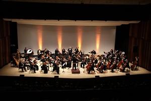 2015-symphony-nova-scotia-sibelius.jpg