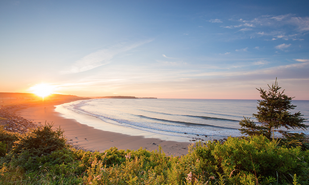 Lawrencetown Beach is a surfer's paradise. - DISCOVER HALIFAX
