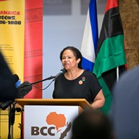 """""""The establishment of the ANSJI is the culmination of generations of work by African Nova Scotian people and communities,"""" said law professor Michelle Williams."""
