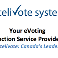 A screenshot from Intelivote's business brochure.
