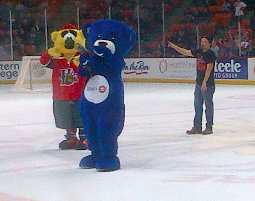 BMO the Bear skates around the Scotiabank Centre last fall. #Awkward