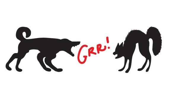 dogcat-grrr.jpg