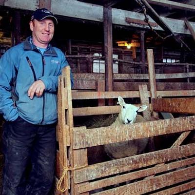 Martock Glen Farm and Oulton's Meat Store
