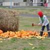 Common Roots Urban Farm's Harvest Hootenanny and Pumpkin Smash