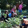 The Dartmouth North Community Food Centre needs a few good gardeners