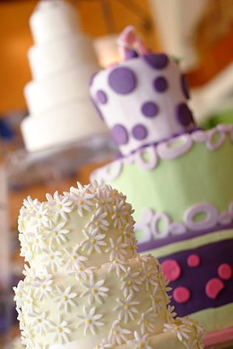 We demand fine, colourful cakes! And plenty of them. photo Julé Malet-Veale