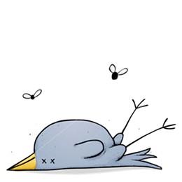 dead-bird1.jpg