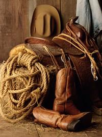 cowboyrs.jpg