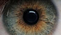 beautiful_blu_eye_eyes_fantastic_favim_com_288510_jpg-magnum.jpg