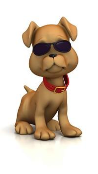 cool_dog_pt0000_5_30_08_pro_me_jpg-magnum.jpg