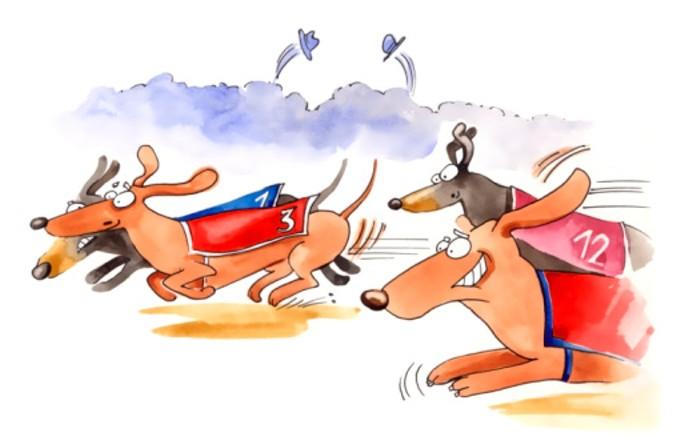 weiner_dog_race.jpg
