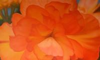 "PHOTO COURTESY SIMON GALLERY OF FINE ART - Radiance Emerging, Elizabeth von Isser, 36"" x 60"", Acrylic on canvas"
