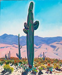 ad28a2dc_michael_drury_big-saguaro-and-the-rincons_91120-0814-002.jpg