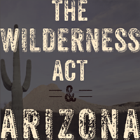 5ed4a732_wildernessact_cabdiv2.png