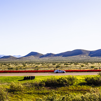 A country club for racing enthusiasts, Inde Motorsports Ranch in Willcox ups its game