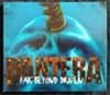 Pantera-Far Beyond Driven