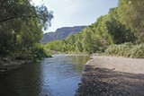The creek in Aravaipa Canyon flows all year round.