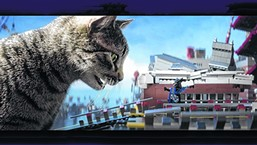 The Cat Video Fest - COURTESY