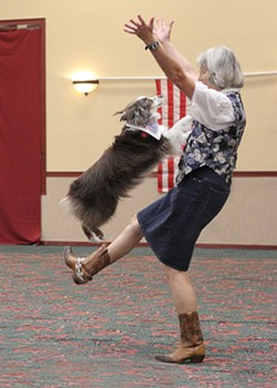Members of the Tucson Musical Canine Freestyle Club performing one of their dances together. - TUCSON CANINE FREESTYLE FACEBOOK PAGE