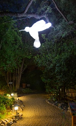 Luminous sculptor by the internationally accredited, Mykl Wells, displayed at Tucson Botanical Gardens. - COURTESY FO TUCSON BOTANICAL GARDENS