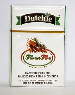 Pack of Dutchies. - LOGAN BURTCH-BUUS