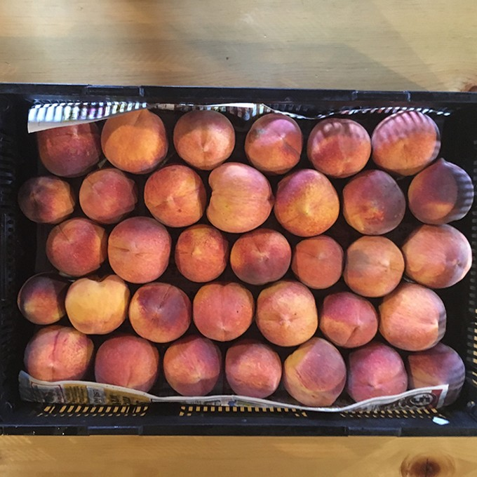 Cochise County peaches. - PIVOT PRODUCE