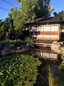 yume_japanese_gardens.jpeg