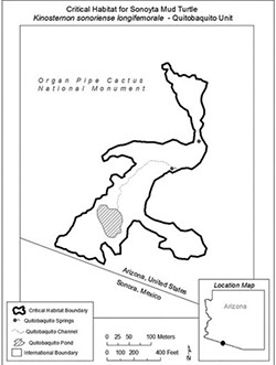 The 12.3-acre critical habitat for the endangered Sonoyta mud turtle is in the turtle's historic territory, but that land now butts up against the U.S.-Mexico border and a pond the turtles use is just 100 yards from where the wall will go up. (Map courtesy U.S. Fish and Wildlife Service)