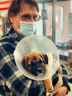 Humane Society volunteer Peter Bisschop with pup at Pawsh. - BRIAN SMITH