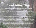 "Awakening Our Connection to Nature - ""Forest Bathing"" Walk"