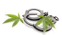 MMJ: Criminal Conduct