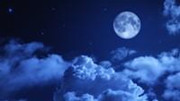 Blue Moon Festival