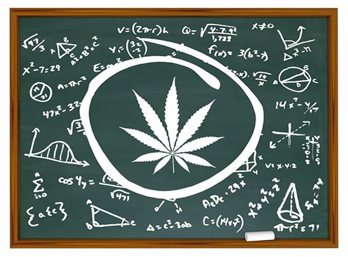 bigstock-marijuana-cannabis-weed-pot-fo-298586590.jpg