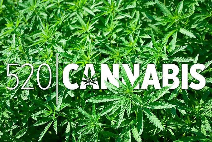 mmj_title_520cannabis.jpg