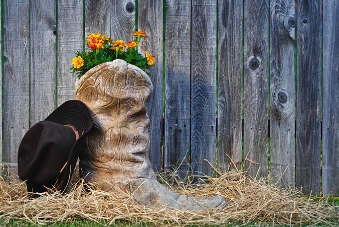 bigstock-blooming-cowboy-boot-38082154.jpg