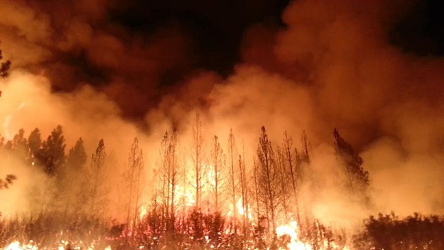 California's Rim Fire started in August 2013 and burned roughly 400 square miles.