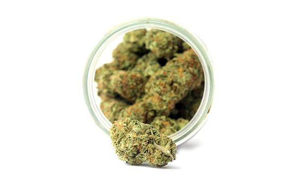 bigstock-marijuana-marijuana-buds-in-a-285931108.jpg