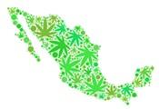Mexico's Mandate