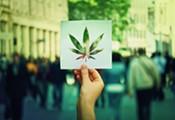 Medical Marijuana: Data for Dummies