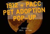 1912 + P.A.C.C Adoption Pop-Up