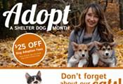 HSSA Discounted Adoptions