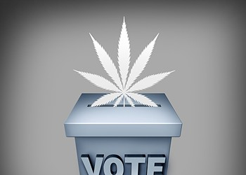 Candidates on Cannabis, Part 2