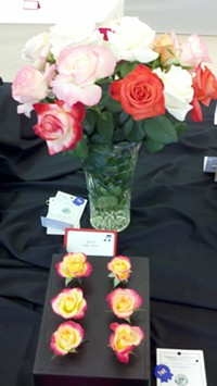 photo of show table - Uploaded by Rose Society of Tucson